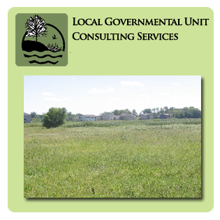 LGU Consultation Services