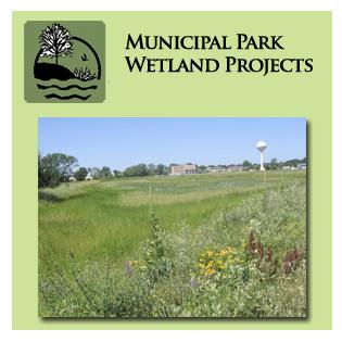 Municipal Park Wetland Services