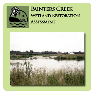 Painters Creek Wetland Restoration Assessment