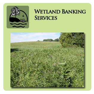 Wetland Banking Services